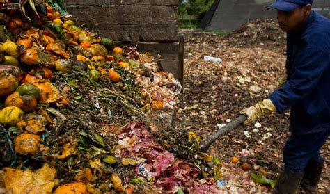 vegetables when they are being eaten what our food is really doing to the planet in 15 jaw