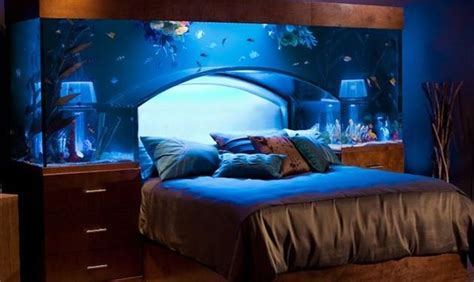 aquarium bed headboard 650 gallon fish tank aquarium bed