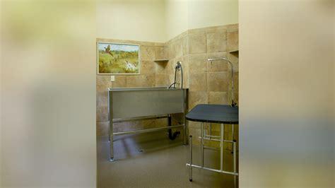 dog grooming salon floor plans 100 dog grooming salon floor plans luxe apartments