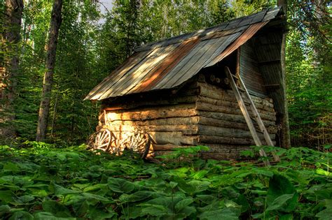 cabin in the woods photograph by jakub sisak