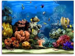 Living Marine Aquarium 2: Free 3d Screensaver, Fish 3D Screen Saver