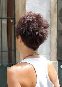 backs of hairstyles back view of short haircuts for women