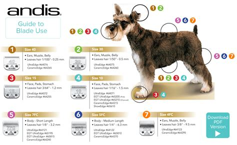 what size clippers do you use on a boys cut andis andis dog clippers pet grooming grooming