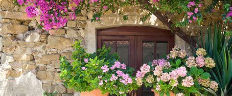 winterharte pflanzen für balkon garten balkon idee