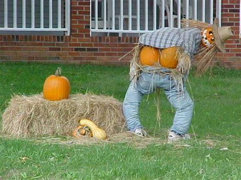 hilarious decorations lawn decoration humor