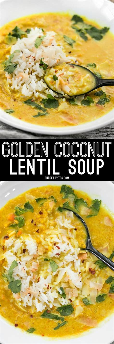 Vegan Lentil Detox Soup by Best 25 Vegan Lentil Recipes Ideas On Vegan