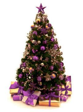 christmas trees for hire