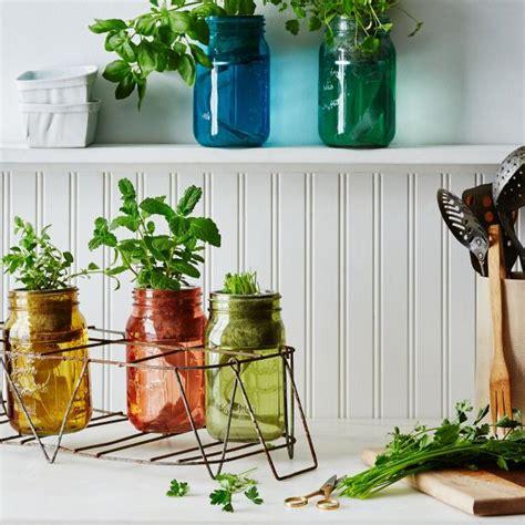 tabletop hydroponic kits hgtv