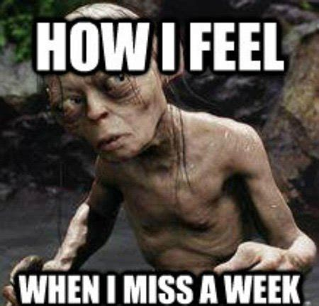 How I Feel Meme - fitboard fuel vol 19 15 awesome fitboard posts