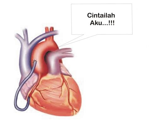 Ace Maxs Tulungagung cara mencegah penyakit jantung bliblinews