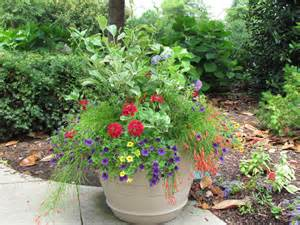 Potted Garden Ideas Bwisegardening Day 365 Of 365 Days Of Container Gardening