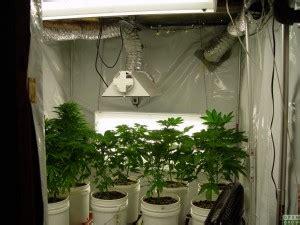 Small Home Grow Setup 10 Steps To Setup Your Marijuana Grow Room