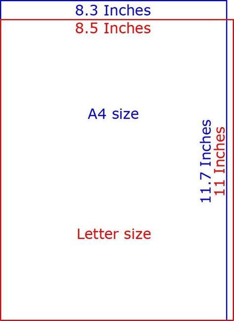 a4 paper size in inches vs letter size design resources