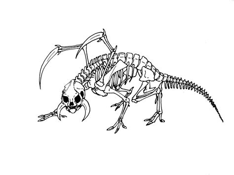 dinosaur bones pages coloring pages