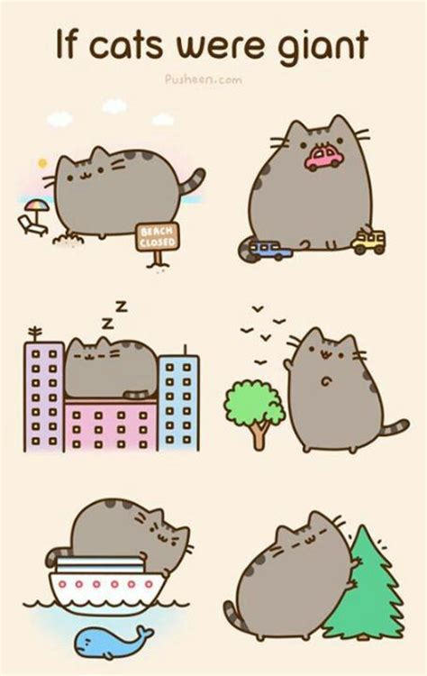368 best images about pusheen is awesome on