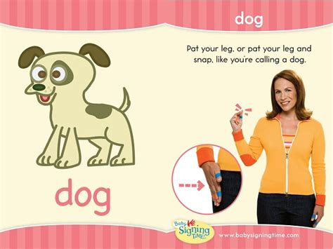 puppy in sign language sign of the week signing time