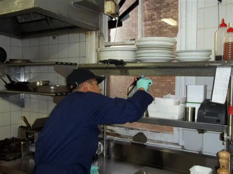 Kitchen Exhaust Cleaning Sydney Chan Cleaning Services Pest In Crows
