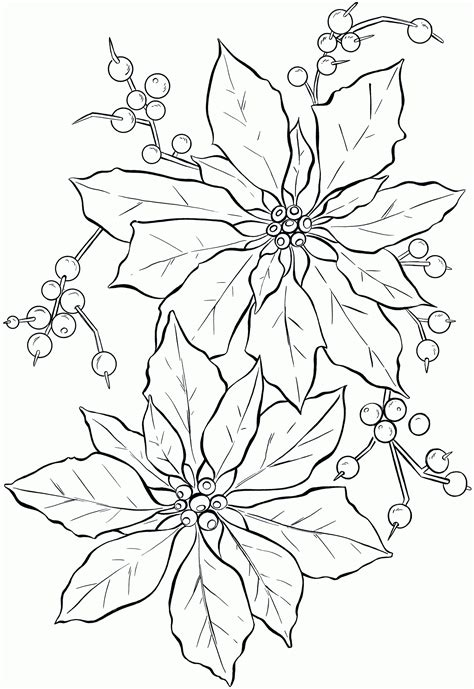 Poinsettia Coloring Page Pdf | coloring page of poinsettia coloring home