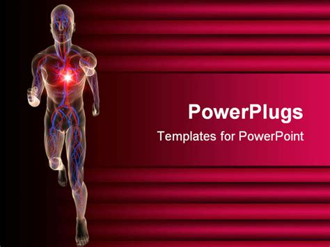 Powerpoint Template Transparent 3d Depiction Of A Human Body Running Showing The Vascular Cardiac Powerpoint Template