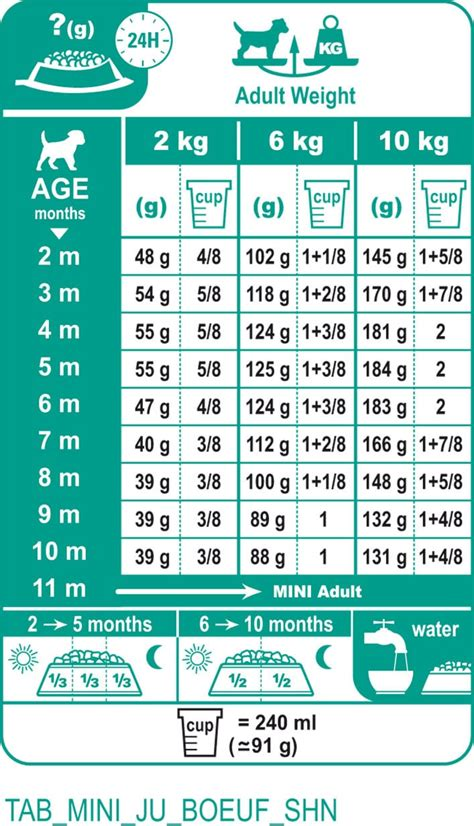 Food Royal Canin Mini Junior 2kg royal canin food guide food