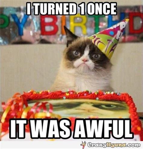 Birthday Meme Grumpy Cat - grumpy cat s birthday