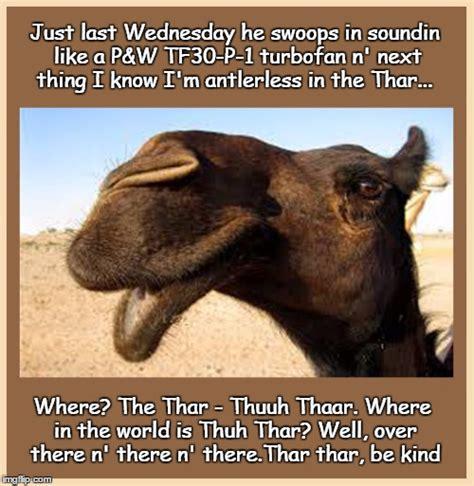 Wednesday Hump Day Meme - bullwinkle imgflip