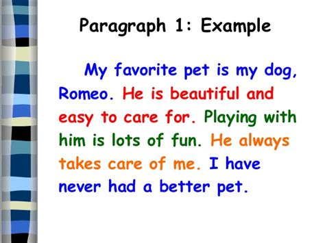 My Favorite Pet Essay by Five Paragraph Essay