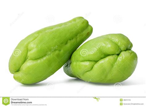 tayota in english chayote stock image image of nutrition fruit alligator