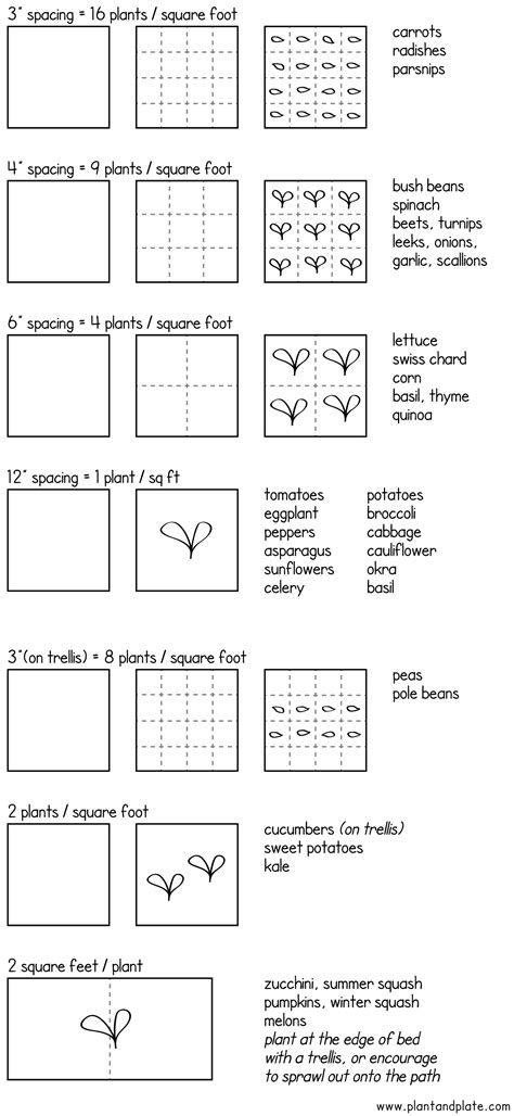 Garden Spacing by Square Foot Garden Spacing Guide Garden Ideas Square