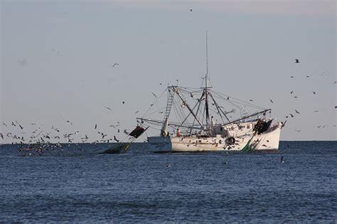shrimp boat stuff shrimp boats are a comin flickr photo sharing