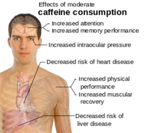 Symptoms Of Detoxing From Caffeine by Stuff About The World August 2012