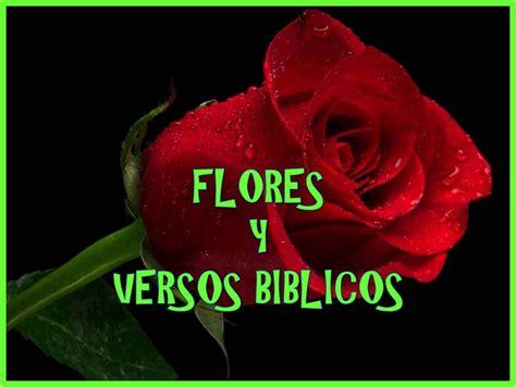 imagenes biblicas de flores flores y versos biblicos youtube
