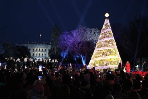 the white house christmas tree is lit