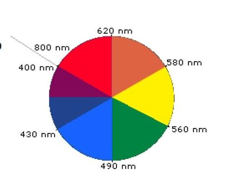 color wheel with wavelengths get confused on the solubility of indigo soluble or