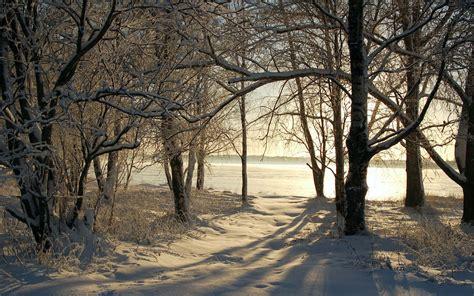 imagenes de invierno reales paisajes de invierno landscapes