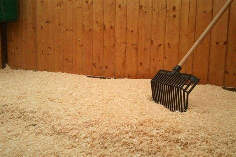 horse stall bedding pine shavings animal bedding strathcona ventures