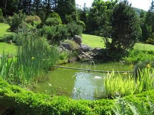 bassin jardinage wikip 233 dia