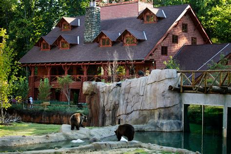 zoo lights tn attractions big cypress lodge tn