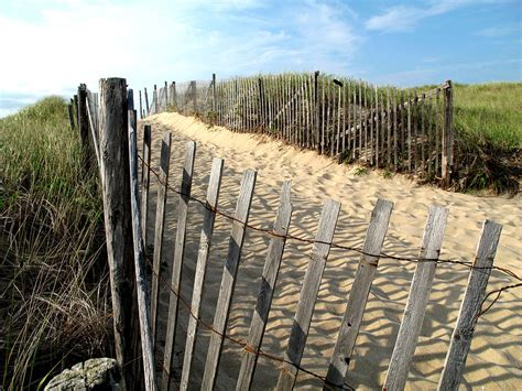 www cape cod five cape cod dune fencing photograph by barbara mcdevitt