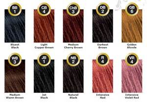 color sallys sallys hair color chart images