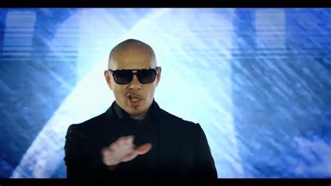 how to your pitbull to be a service pitbull international pitbull rapper photo 34051699 fanpop