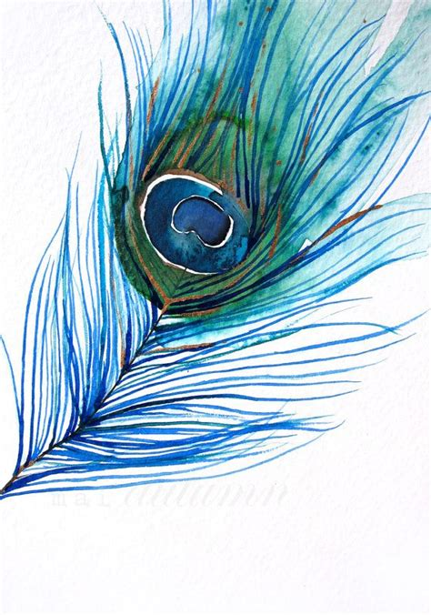 gift for watercolor painting peacock feather bird 8x10 print watercolor