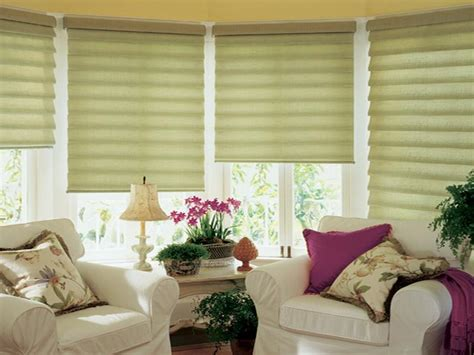 Best Place To Buy Window Blinds Doors Windows Window Treatment Ideas For Picture