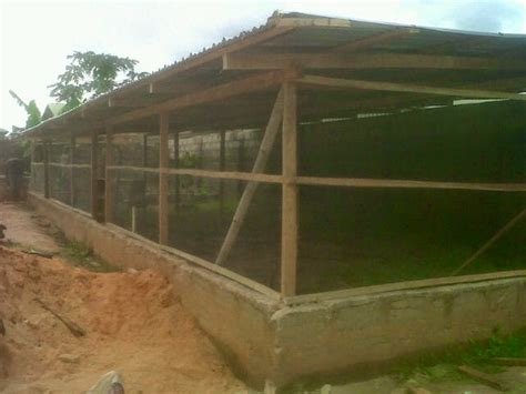 Pictures Of Poultry Pen House Design Layout