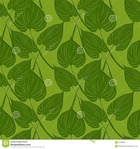 leaves pattern photography seamless pattern with calls leaves royalty free stock
