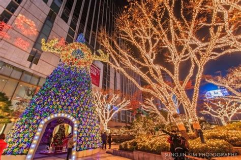 10 best places to get a christmas tree in us top 10 best trees places to see in your lifetime