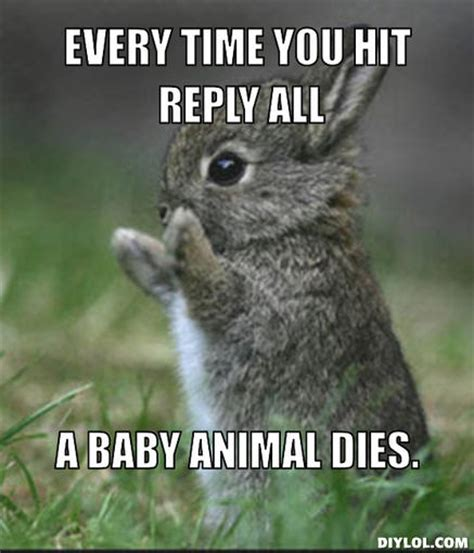 Baby Animal Memes - reply all baby animal memes fml replied all again