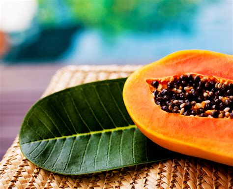 Natural Mosquito Repellents papaya seeds is it safe to eat them snaplant com
