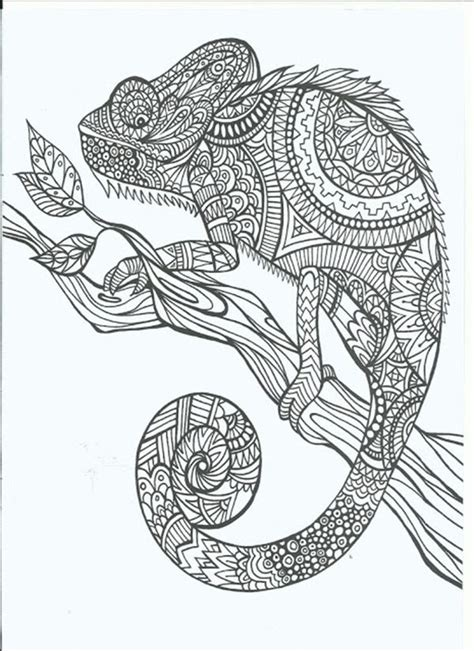 coloring pages for adults etsy free printable coloring pages for adults 12 more designs