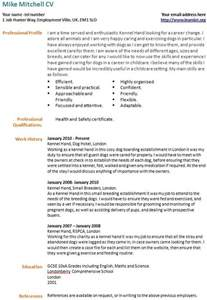 Resume For Career Change To Best Photos Of Curriculum Vitae Exles Cv Exles Exle Resume